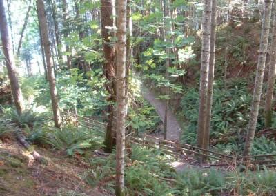 trail1-lg-x600